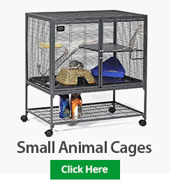Small Animal Cages border=