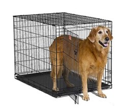 Dog Crates for Dogs 71 90 Lbs midwest i 1542