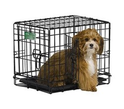 Double Door Dog Crates midwest i 1518dd