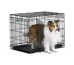 Wire Dog Crates midwest i 1530dd