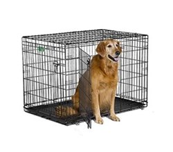 Wire Dog Crates midwest i 1542dd