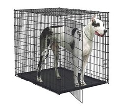 Dog Crates for Dogs 111 190 Lbs midwest sl54dd