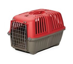 Travel Carriers midwest 19 inch spree plastic pet carrier red