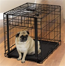 Dog Crates for Dogs 11 25 Lbs midwest 1924