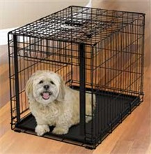 Dog Crates for Dogs 26 40 Lbs midwest 1930
