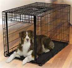 Dog Crates for Dogs 71 90 Lbs midwest 1942
