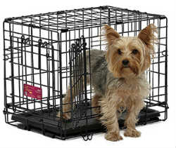 Midwest A.C.E. Series Double Door Pet Crates midwest ace 418dd