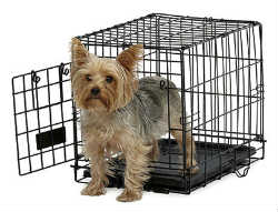 Midwest A.C.E. Series Single Door Dog Crates midwest ace 418