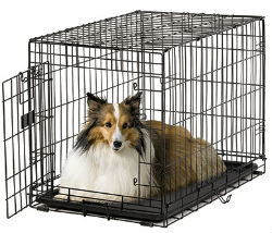 Midwest A.C.E. Series Single Door Dog Crates midwest ace 430