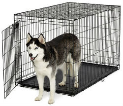 Midwest A.C.E. Series Single Door Dog Crates midwest ace 448