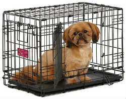 Midwest A.C.E. Series Double Door Pet Crates midwest ace 422dd