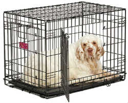 Midwest A.C.E. Series Double Door Pet Crates midwest ace 430dd