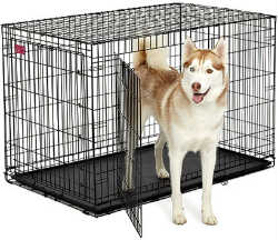 Midwest A.C.E. Series Double Door Pet Crates midwest ace 448dd