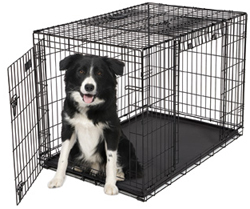 42 Inch Dog Crates midwest 1942dd